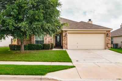 Fort Worth Single Family Home For Sale: 904 San Felipe Trail
