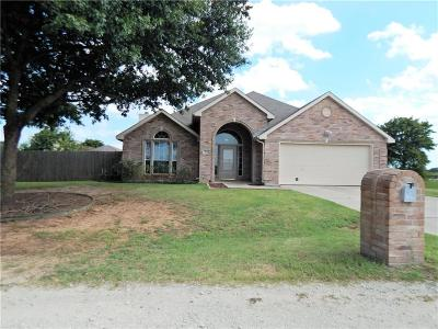 Single Family Home For Sale: 705 Hillside Drive