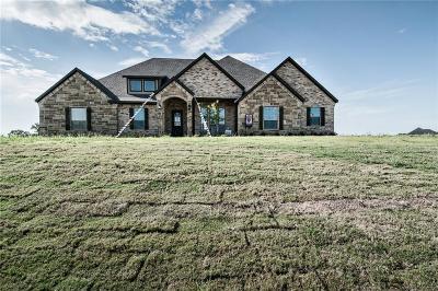 Millsap Single Family Home For Sale: 141 El Dorado Trail
