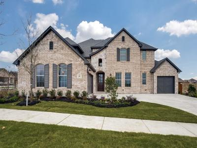 Frisco Single Family Home For Sale: 483 Hyer Circle