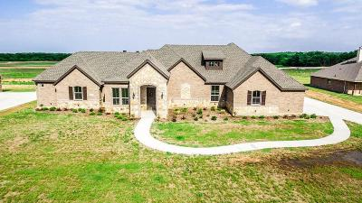 Springtown Single Family Home For Sale: 8340 Old Springtown Road
