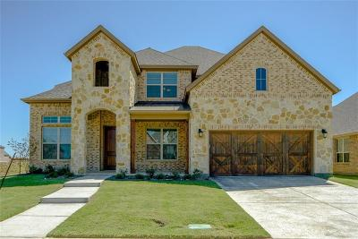 Frisco Single Family Home For Sale: 11577 Teresa Lane