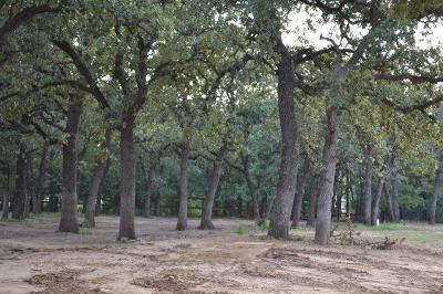Tarrant County Residential Lots & Land For Sale: 1312 Willis Lane