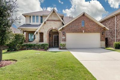 Little Elm Single Family Home For Sale: 3324 Canyon Lake Drive