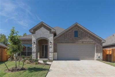 Fort Worth Single Family Home For Sale: 9124 Outback Drive
