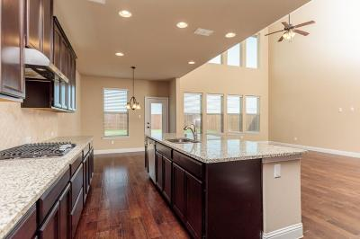 Single Family Home For Sale: 1053 Mesa Crest Drive