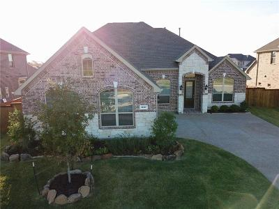 Frisco Single Family Home For Sale: 16157 Moss Haven Lane