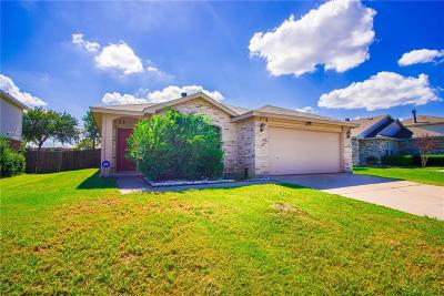 Arlington Single Family Home For Sale: 1014 Mazourka Drive