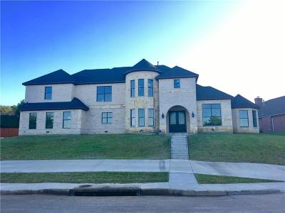 Desoto Single Family Home For Sale: 1005 Millington Drive