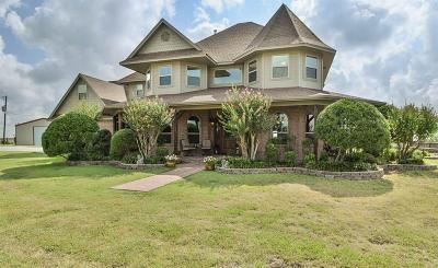 Weatherford Single Family Home For Sale: 200 Trinity View Road