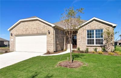 Frisco Single Family Home For Sale: 8145 Reservoir Drive
