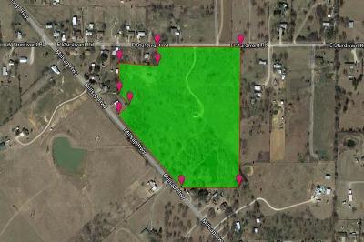 Mineral Wells Farm & Ranch For Sale: 240 E Sturdivant Road