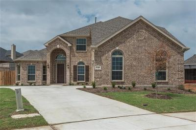 Little Elm Single Family Home For Sale: 740 Frisco Hills Court