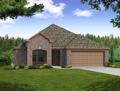 Little Elm Single Family Home For Sale: 1012 Bird Creek Drive