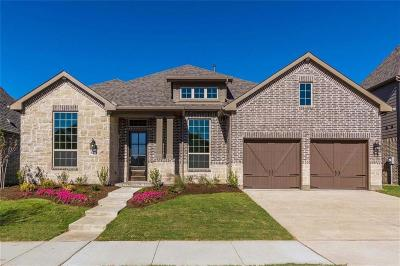 Argyle Single Family Home For Sale: 1204 7th Street