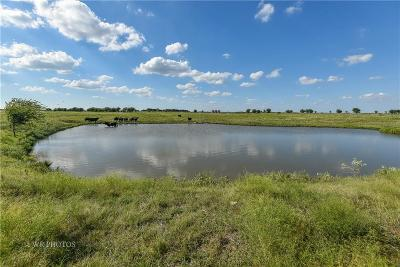 Farm & Ranch For Sale: 16361 Fm 1173