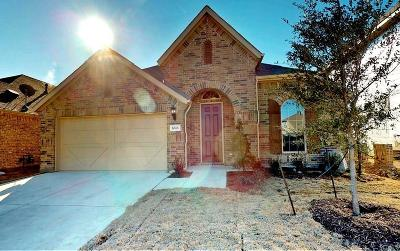 Denton Single Family Home For Sale: 6513 Roaring Creek Drive