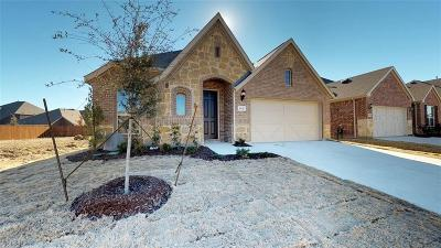 Denton Single Family Home For Sale: 6421 Roaring Creek Drive