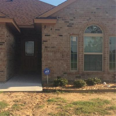 Fort Worth Single Family Home For Sale: 2001 Pacino Drive
