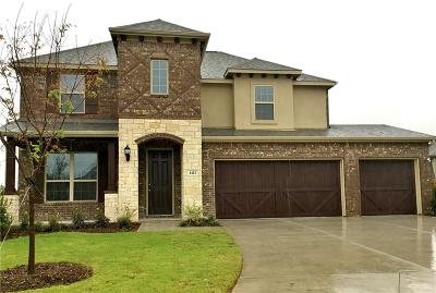 McKinney Single Family Home For Sale: 4113 Red Granite Lane