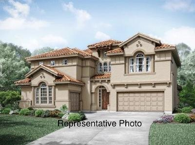 Frisco Single Family Home For Sale: 13346 Affirmed Avenue