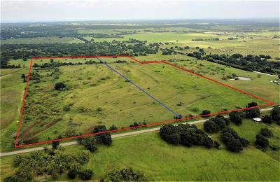 Lipan Farm & Ranch For Sale: County Rd 146
