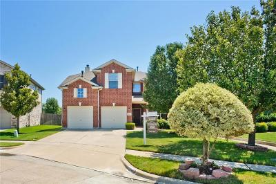 North Richland Hills Single Family Home Active Contingent: 6264 Dream Dust Drive