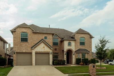 Fort Worth TX Single Family Home For Sale: $378,000