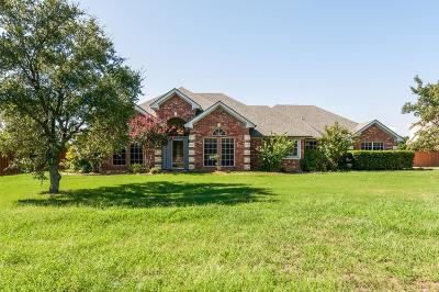 Wise County Single Family Home For Sale: 103 Aurora Vista Trail