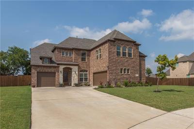 Wylie Single Family Home For Sale: 501 Sun Meadow Drive