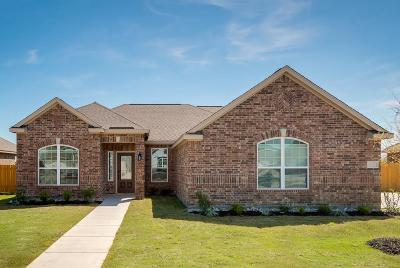 Glenn Heights Single Family Home For Sale: 615 Meadow Springs Drive