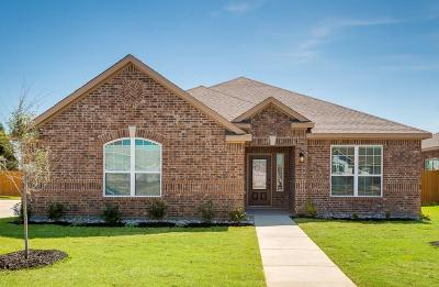 Glenn Heights Single Family Home For Sale: 612 Roaring Springs Drive