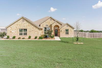 Wise County Single Family Home For Sale: 183 High Meadows Road