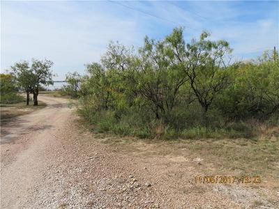Abilene Single Family Home For Sale: 213 Honey Bee Road