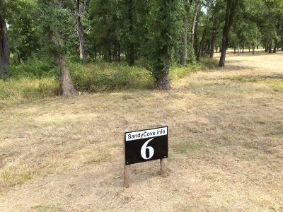 Streetman Residential Lots & Land For Sale: 6 Sandy Cove
