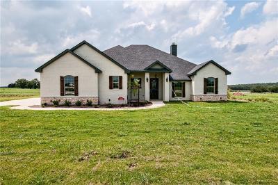 Millsap Single Family Home For Sale: 157 El Dorado Trail