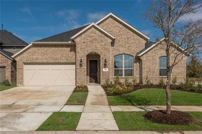 Argyle Single Family Home For Sale: 1100 5th