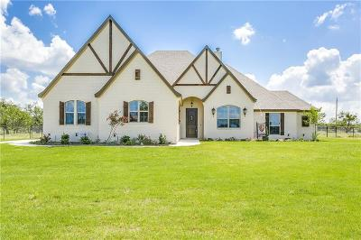 Millsap Single Family Home For Sale: 100 El Dorado Trail