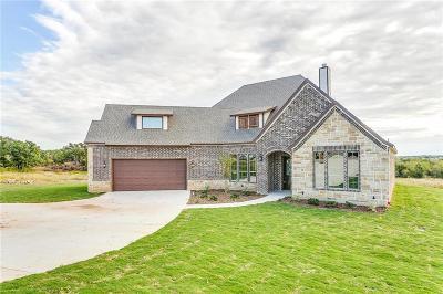Millsap Single Family Home For Sale: 190 El Dorado Trail