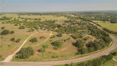 Somervell County Single Family Home For Sale: 6341 Fm 51