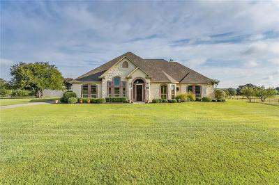 Aledo Single Family Home For Sale: 4057 Annetta Centerpoint Road
