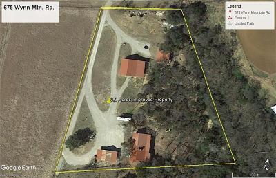 Mineral Wells Farm & Ranch For Sale: 675 Wynn Mountain Road