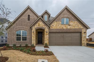 Flower Mound Single Family Home For Sale: 6125 Whiskerbrush Road