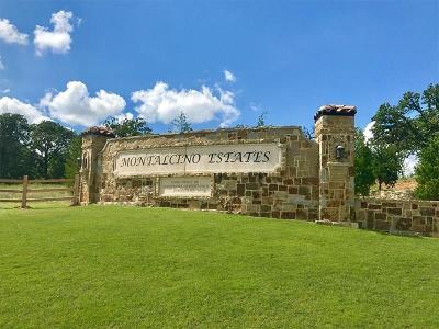 Flower Mound Single Family Home For Sale: 5004 Montalcino Boulevard