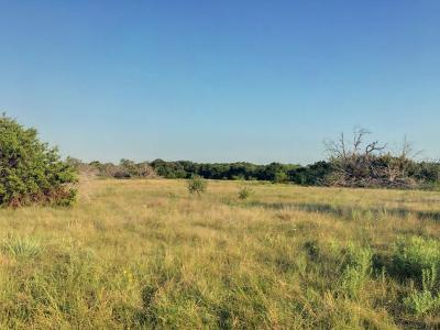 Stephens County Farm & Ranch For Sale: 1301 Fm 1287