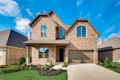 Prosper Single Family Home For Sale: 16521 Dry Creek Boulevard