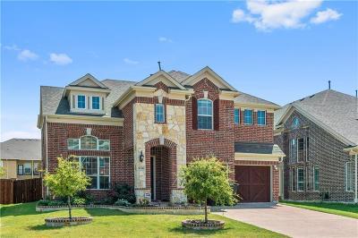Plano Single Family Home For Sale: 3636 Oakstone Drive