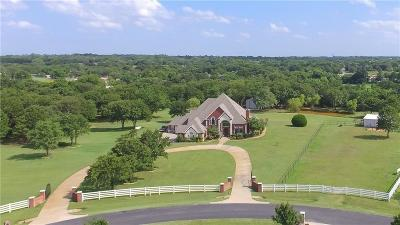 Burleson Single Family Home For Sale: 233 Sherry Lane