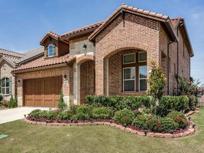 Irving Single Family Home For Sale: 6700 Castillo Street