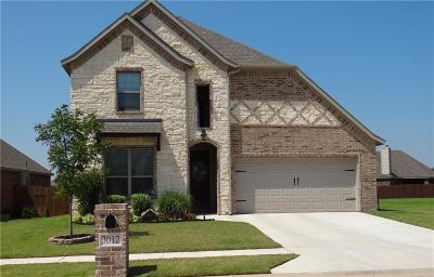 Wise County Single Family Home For Sale: 3012 Treasure View Drive
